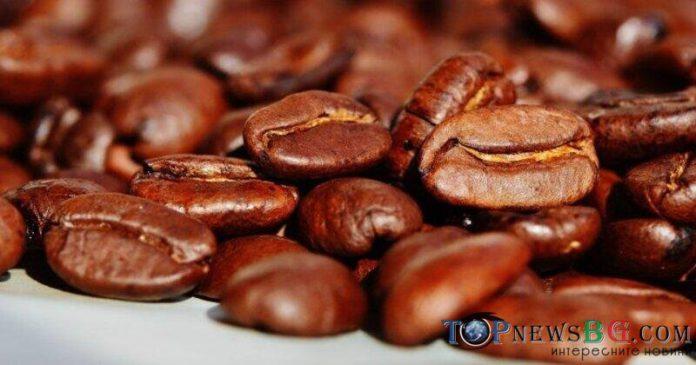 кафе-кофеин