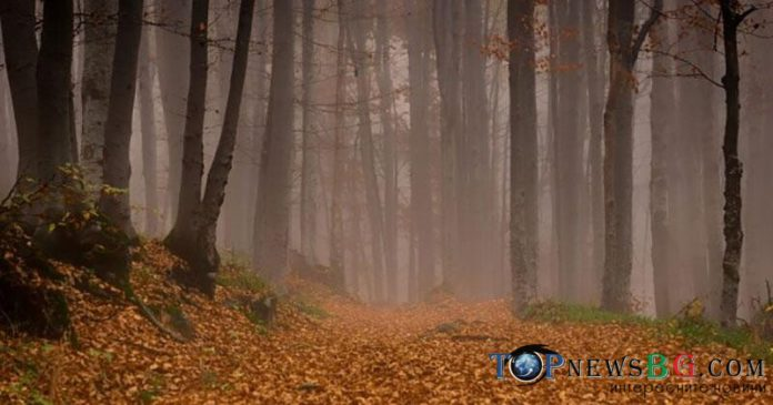 времето, мъгла